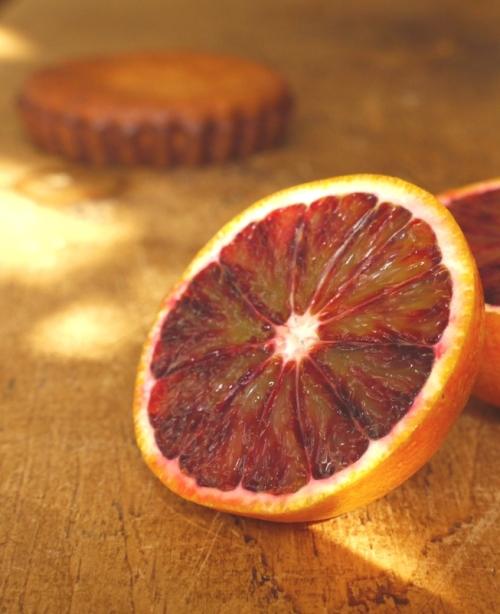 Coconut Almond Cakes with Blood Orange Granita